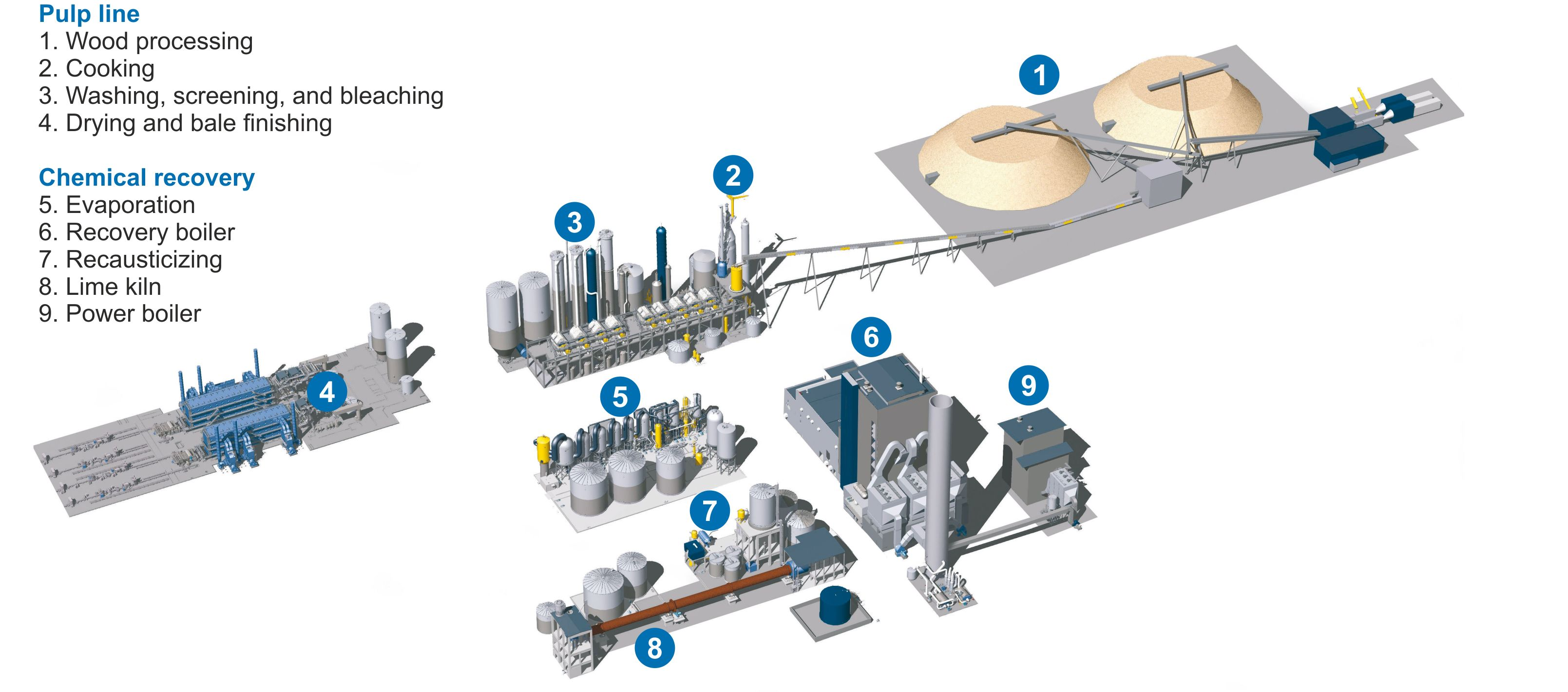 Pulping Chemistry and Technology