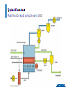 se-products-drying_systems-fluidbed_spray_granulation_sgs_typical.pdf