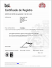 pp-dnv-certification-sindus-andritz-nbr-iso-9001-2008-2014-ing_es.pdf